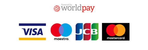 World Pay Payments