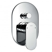 Smart Manual Shower with Diverter