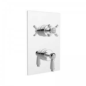 Renaissance Thermostatic Recessed Dual Control Valve